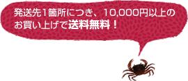 発送先1箇所につき、10,000円以上のお買い上げで送料無料!